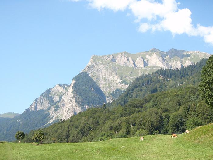 Швейцария, Маенфельд