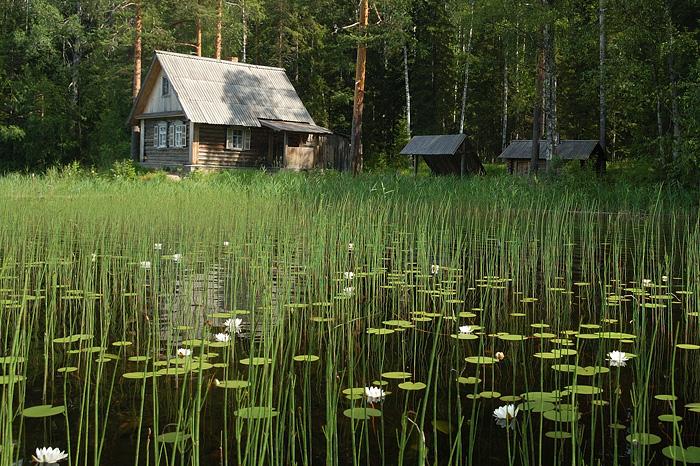 Россия     ландшафты Кенозерский национальный парк