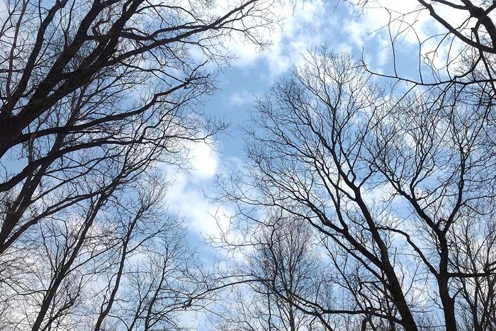 Апрельское небо